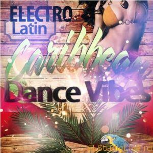 Скачать сэмплы для FL Studio - Black Dynasty Electro Latin Caribbean Dance Vibes