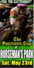 Daily racing - home of the annual Specimen Cup