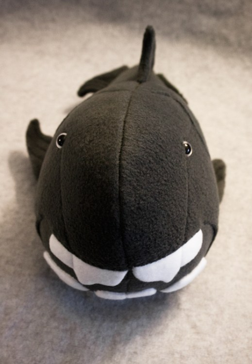 dunkleosteus (prehistoric fish) handmade plush, goofy smile and all