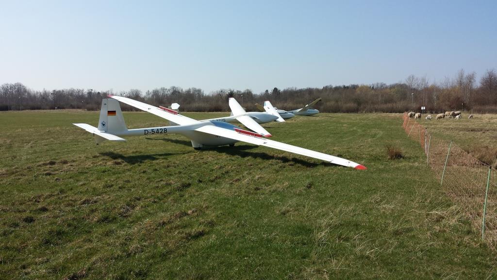 Segelflugzeuge warten auf den Start