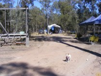 Chi at the campsite