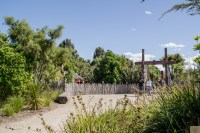 Hamilton gardens 17
