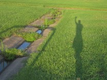 Along the Way 3