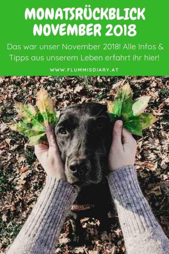 monatsrückblick-november-2018