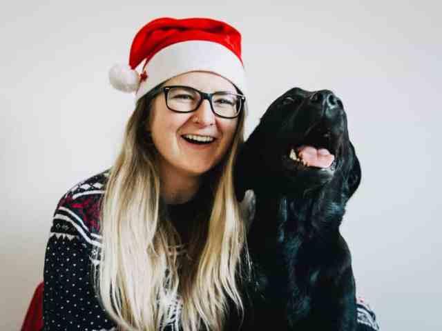 weihnachten-mit-hund-kein-stress-ohne-hunde