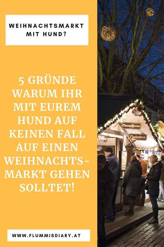 weihnachtsmarkt-mit-hund-tipps