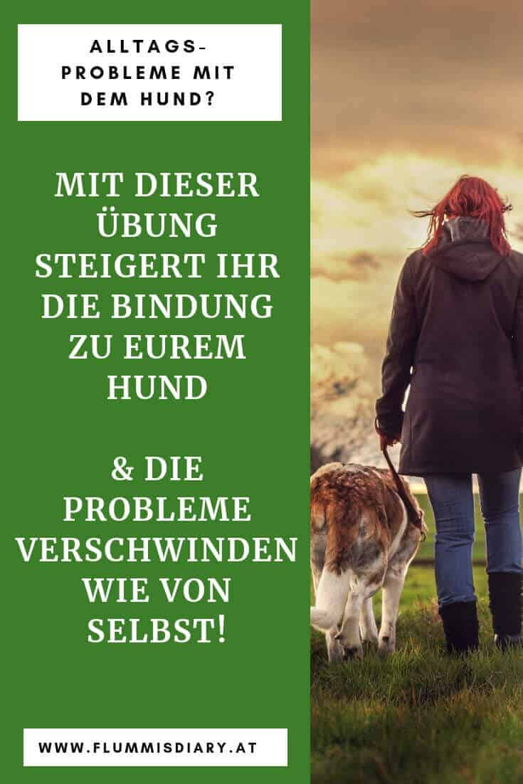 hundetraining-kontaktübung-hund-bindung