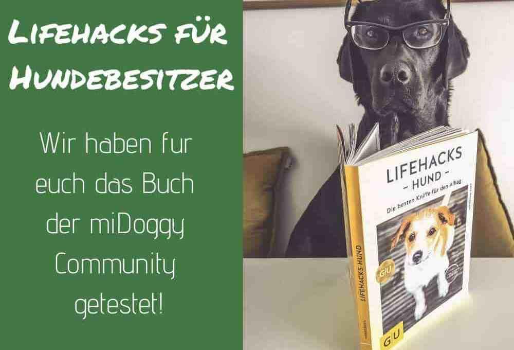 lifehacks-hund-buch