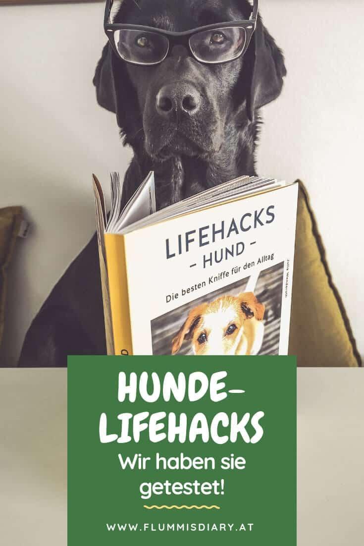 lifehacks-hund-hundebesitzer-buch