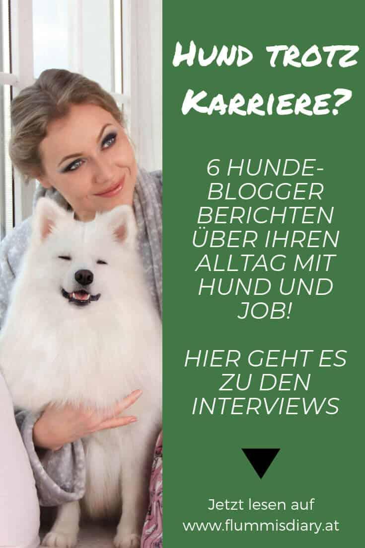 hund-karriere-interview-hundeblogger
