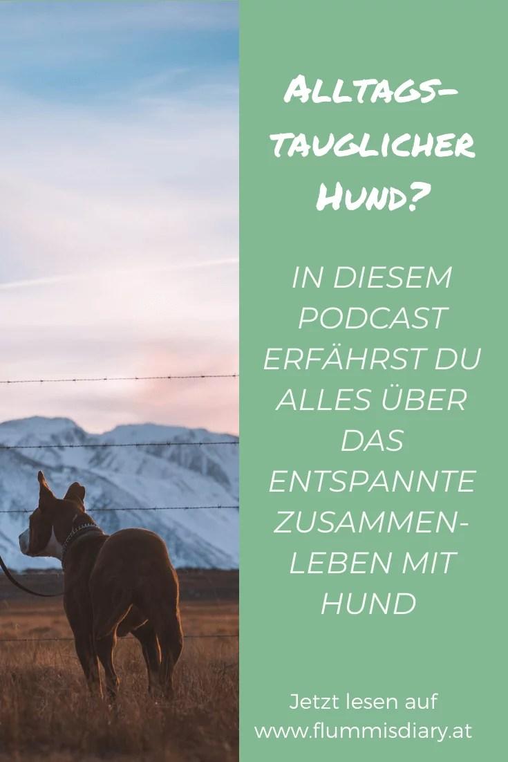 wau-hunde-podcast-oesterreich