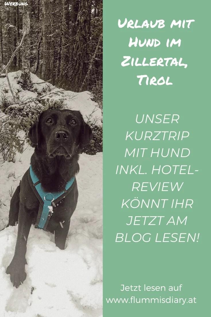 hoteltest-hotel-magdalena-hunde-review