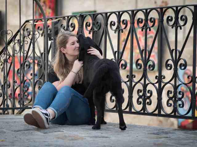 celia-ritzberger-hundefotografie-tipps-fotoshooting