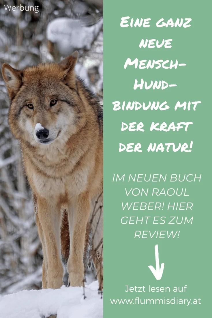 wilde-pfade-buch-review-empfehlung