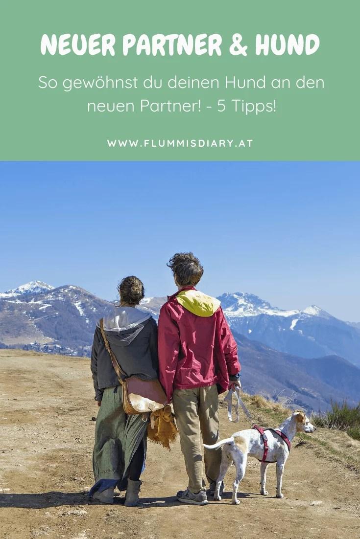 hund-neuer-partner-gewoehnen-tipps-zusammenfuehrung-blog-flummisdiary