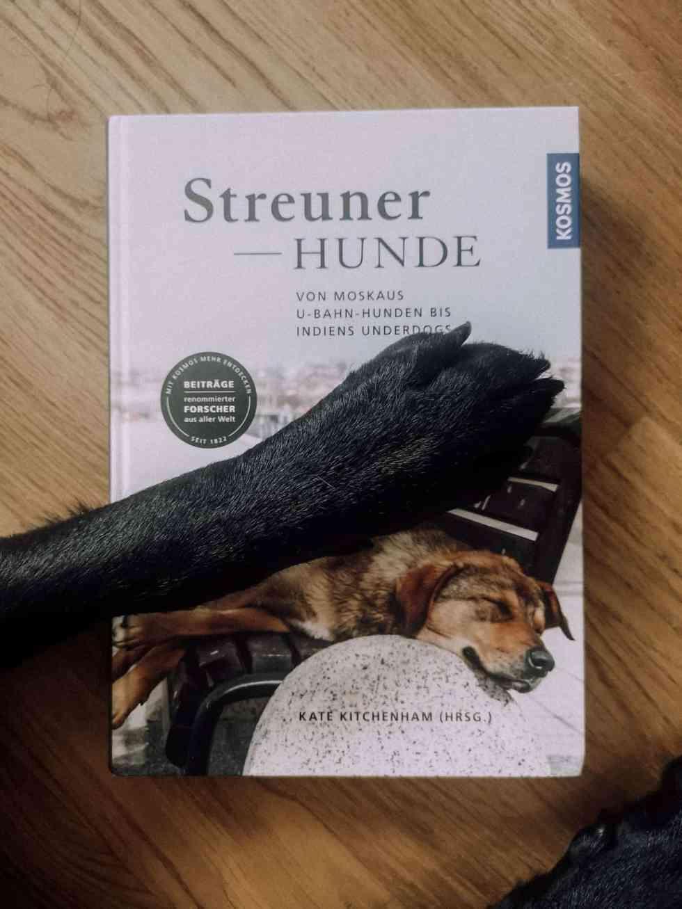 streunerhunde-buchreview-kosmos-blog-bewertung