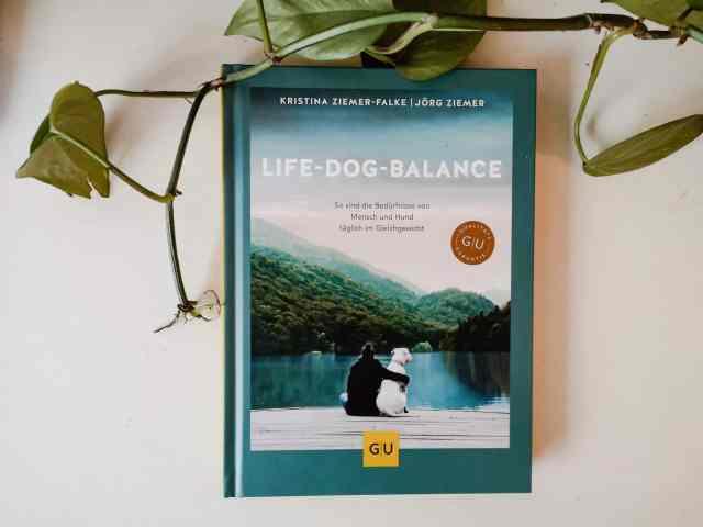 buchreview-life-dog-balance-buch-bewertung-erfahrung