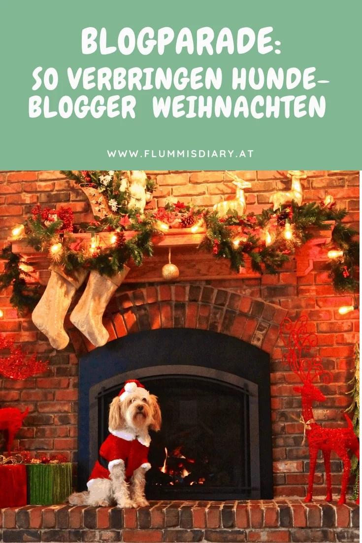 blogparade-so-verbringen-hundeblogger-weihnachten-hund-blog