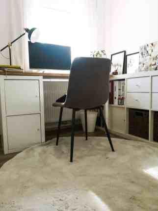 arbeitszimmer-mit-hund-home-office-hunde-officedog-buerohund