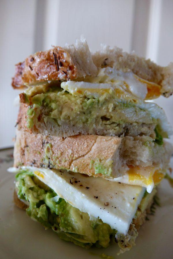 The Avocado Egg Sandwich  The Perfect Breakfast Sandwich!