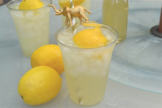 Ginger Lemonade - Tart lemons and spicy ginger, lightly sweetened and served over crushed ice. The perfect beverage that will quickly quench your thirst on a hot summer day.