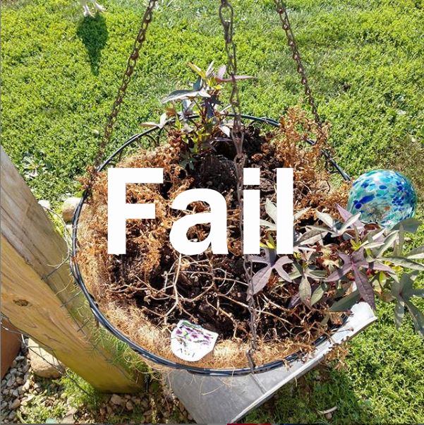 Homestead Failure