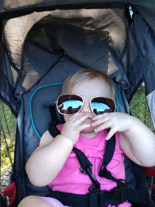 Item you need to homestead with a baby- Stroller
