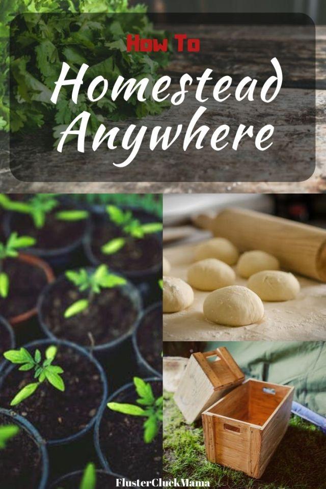 Homestead Anywhere