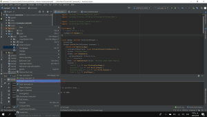 Android Studio Flutter Agency