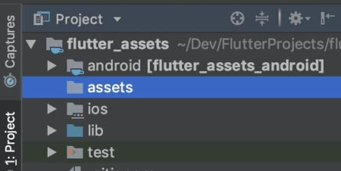 Assets in Flutter