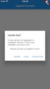 flutter app update