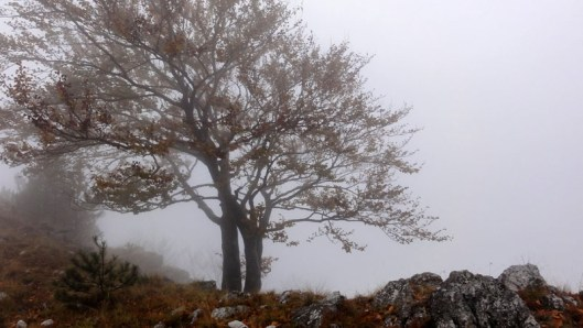 peisaj muntii mehedinti toamna