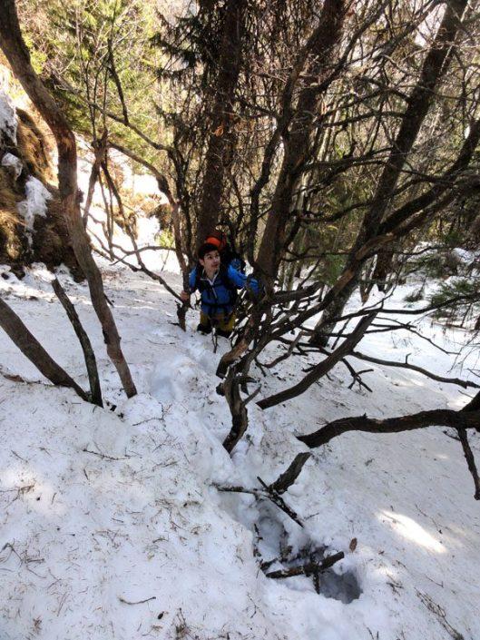 traseu valea malinului iarna
