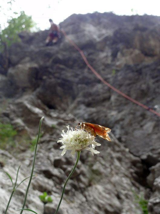 cățărare în chele sohodolului