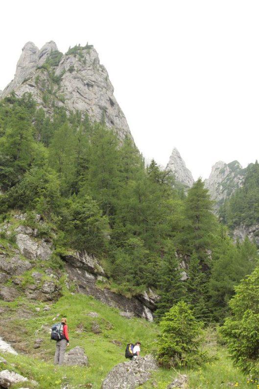 vale de abrupt, Carpati