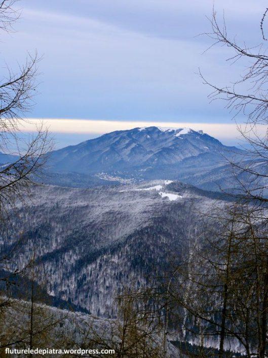 muntii baiului iarna panorama