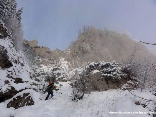 iarna valea costilei refugiul muntii bucegi