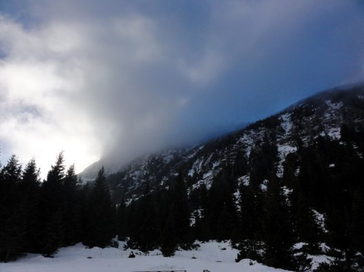 culmea stanisoara iarna, muntii retezat