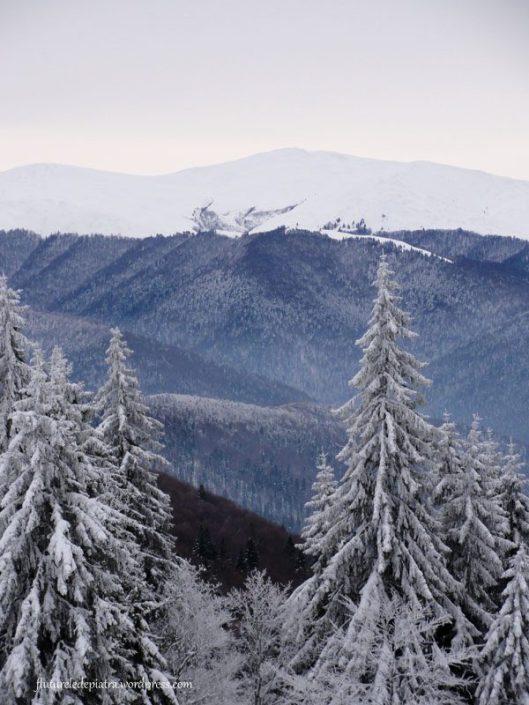 panorama muntii baiului iarna