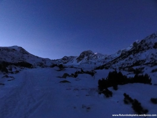 alpinism retezat iarna bucura 2