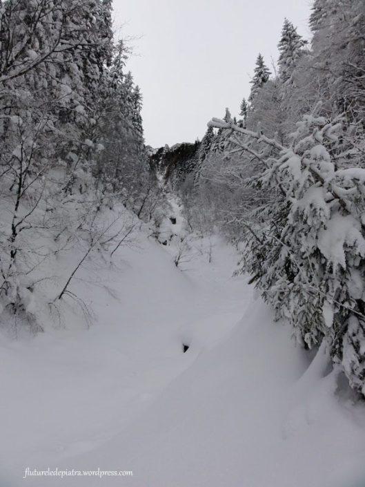valea bujorilor iarna
