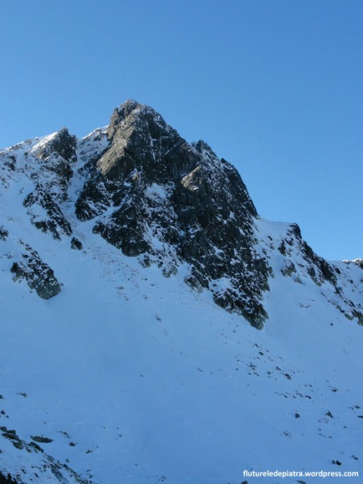 varful bucura 2 muntii retezat