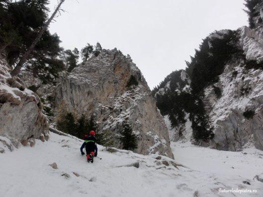 piatra craiului snow