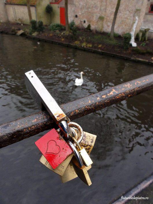 Lacăt inimă pe pod, lebădă