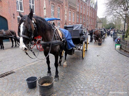 trasura turisti bruges belgia