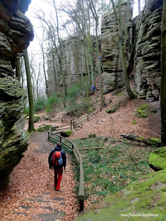 clibing crag Berdorf Luxembourg