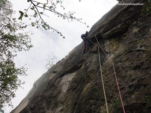 freyr multipitch climbing belgium