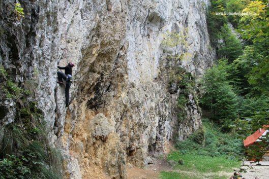 trasee escalada zarnesti