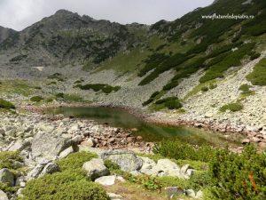 muntii bulgariei