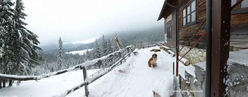 cabana curmatura iarna panorama
